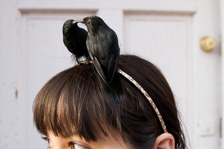 Le baiser des oiseaux