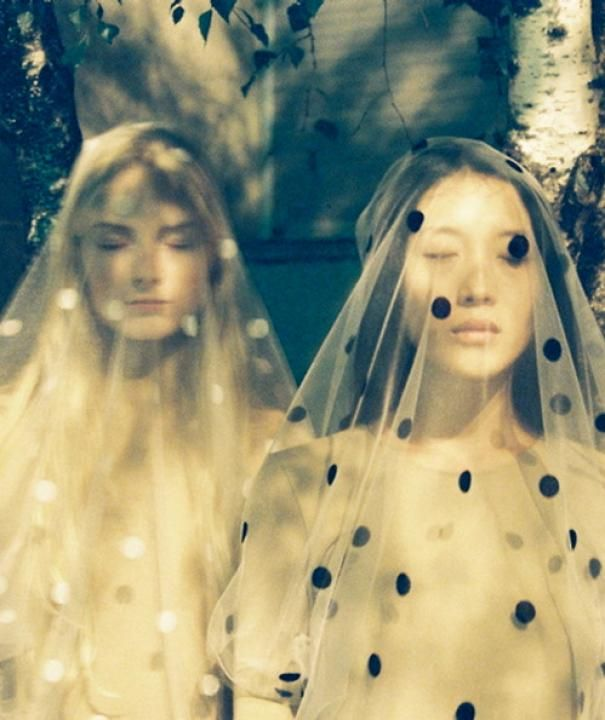 dotted veils