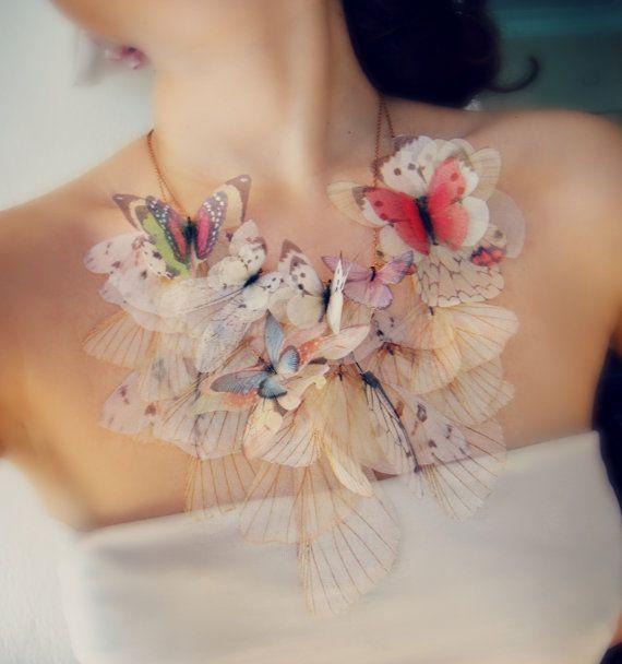 Butterfly (1)