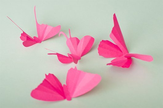 Butterfly (15)