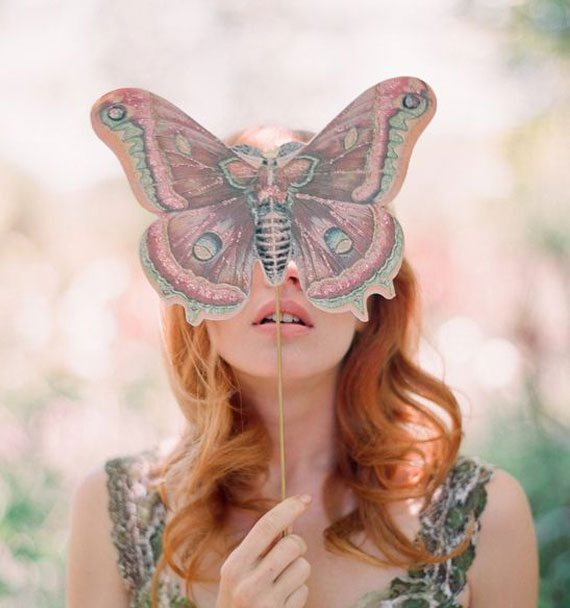 Butterfly-(6)