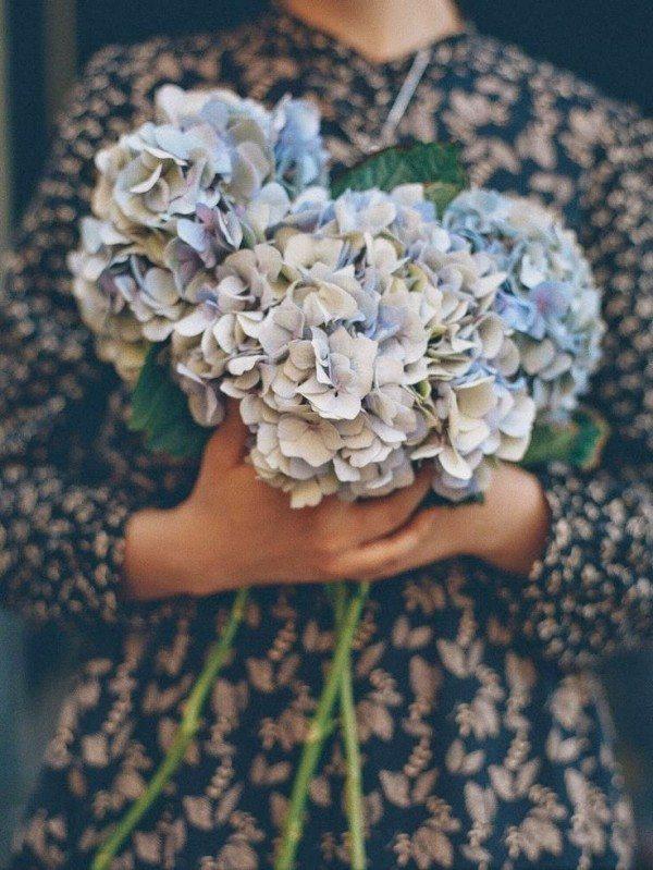 Fleurs (11)