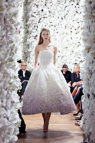 14-Christian-Dior-Haute-Couture-FW-2012