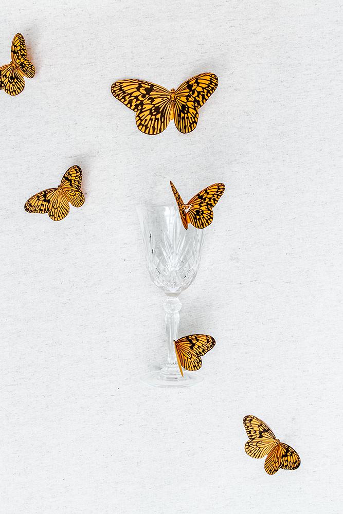 DIY-papillons-etapes-03