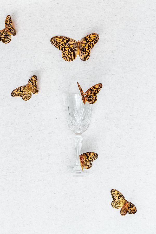 DIY-papillons