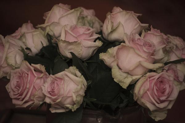 Photos-de-mariage-Lucie & Olivier - Les photos d'Alice19