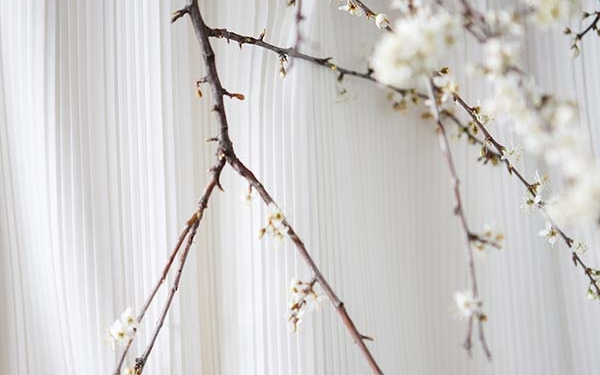 idées-mariage-minimaliste-rhone-alpes